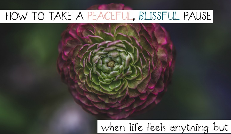 How to Take a Peaceful, Blissful Pause