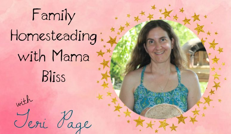 Mama Bliss Coach Teri Page and Homesteading with Family