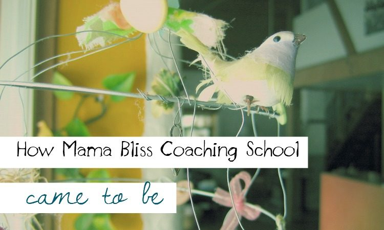 Curious How Mama Bliss Coaching School Became to Be?