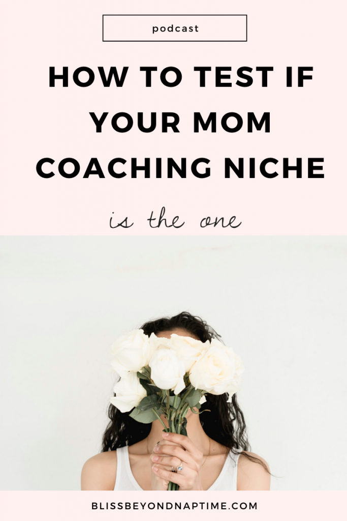 How to Test if Your Mom Coaching Niche is the One